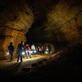 米ケンタッキー州の「マンモス洞窟」/(米「洞窟研究財団」のHPから)