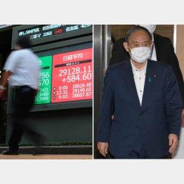 首相は市場から嫌われた?(9月3日の日経平均株価=左)/(C)日刊ゲンダイ
