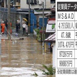 MS&AD×SOMPO 自然災害にも対応、大手損保グループの生涯給与を比較