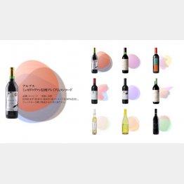 ワインの味の可視化(提供写真)