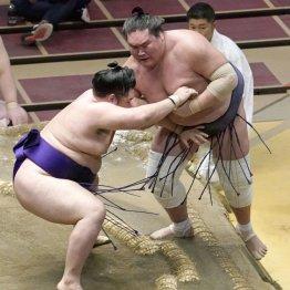 新横綱・照ノ富士が痛恨の2敗目…「長い相撲」が爆弾抱えるヒザにダメージ