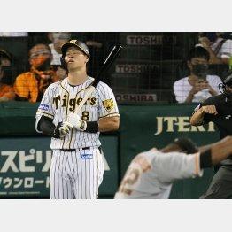 四回阪神2死三塁、見逃し三振に倒れた佐藤(C)共同通信社