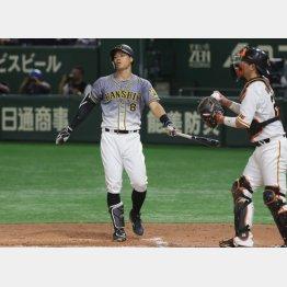 26日もノーヒット、八回に凡退した佐藤輝(C)日刊ゲンダイ