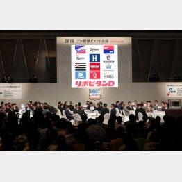 2019年度プロ野球ドラフト会議(C)日刊ゲンダイ