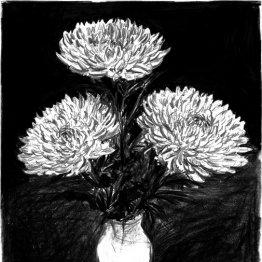 <6>菊の花の存在感で教室内は緊迫