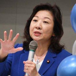 こども庁創設、野田聖子担当大臣に期待できるのか…子育てママの切実な現状と願い