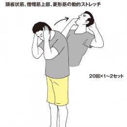 肩こりは筋肉からのSOS! 5つのストレッチ&筋トレで症状を軽減
