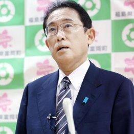 山本太郎の英断で変わった 10.31総選挙は地殻変動の予兆