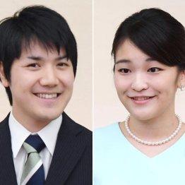 小室圭さんの髪型に一喜一憂する日本メディア それを冷ややかに奇異な目で見る米英メディア