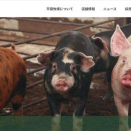 自民党を応援しながら護憲を唱えた平田牧場創業者・新田嘉一の企業家精神