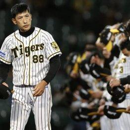 """阪神""""数字上""""は優勝なのに…V逸の原因は「失策数86」4年連続リーグ最多のザル守備"""